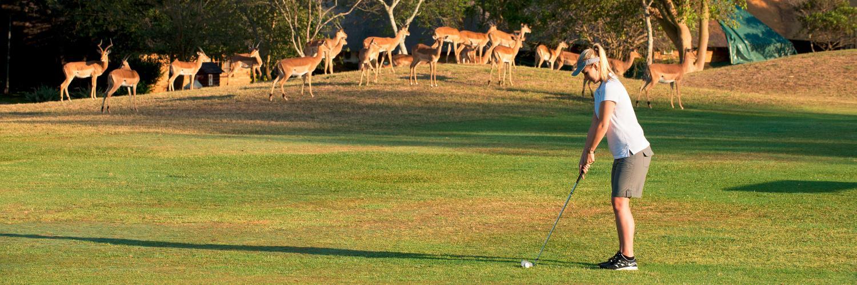 Golf_Hero